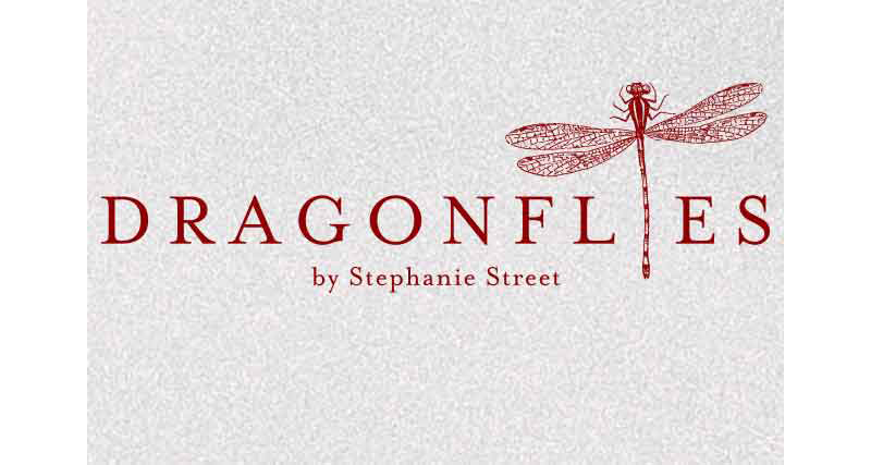 """Dragonflies"": A migrant dreams for home"